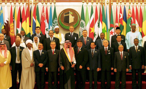 Organization of the Islamic Conference leaders meeting in Dubai.  Just western stooges?