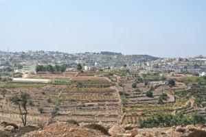 The village of Halhoul (Seth J. Frantzman)