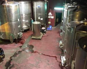Vats of wonderful wine