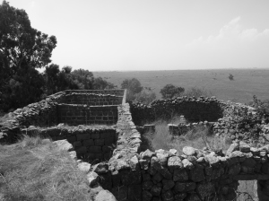 An abandoned village in the Golan; the policies of the 1950s were repeated in 1967 (Seth J. Frantzman)