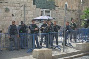 Yasam at Lion's Gate (Seth J. Frantzman)